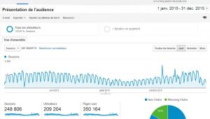 statistiques-Blog-gestion-de-projet-2015